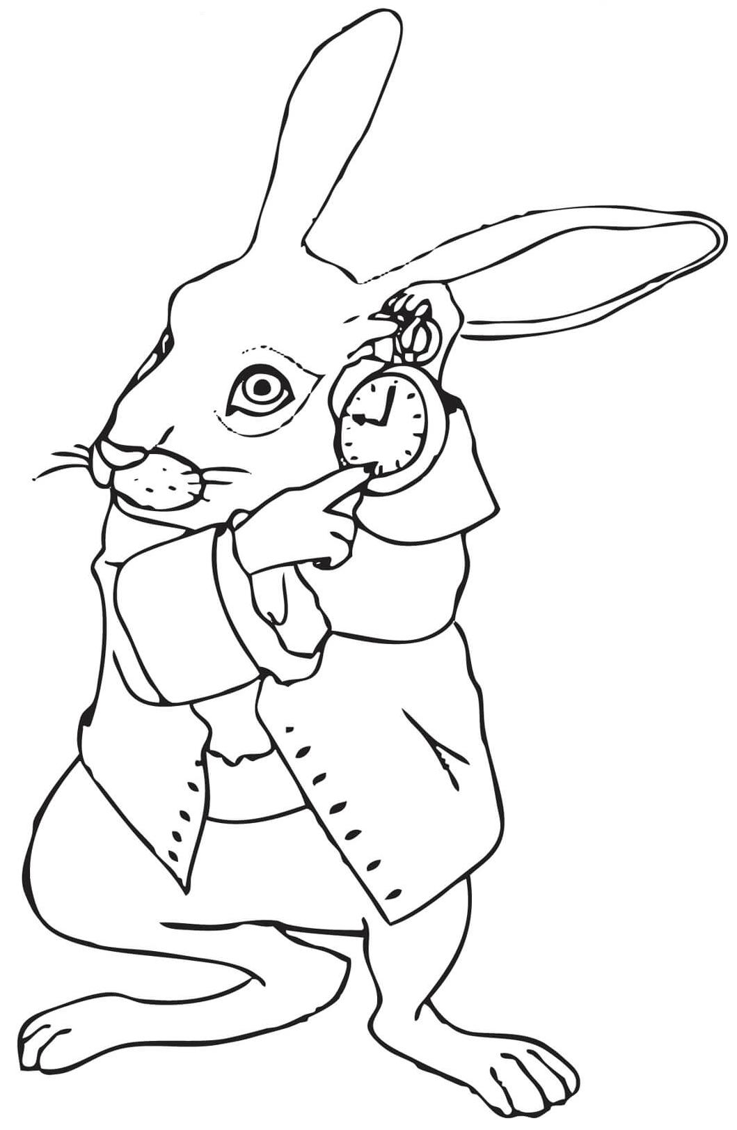 Рисунки кролика из алисы в стране чудес