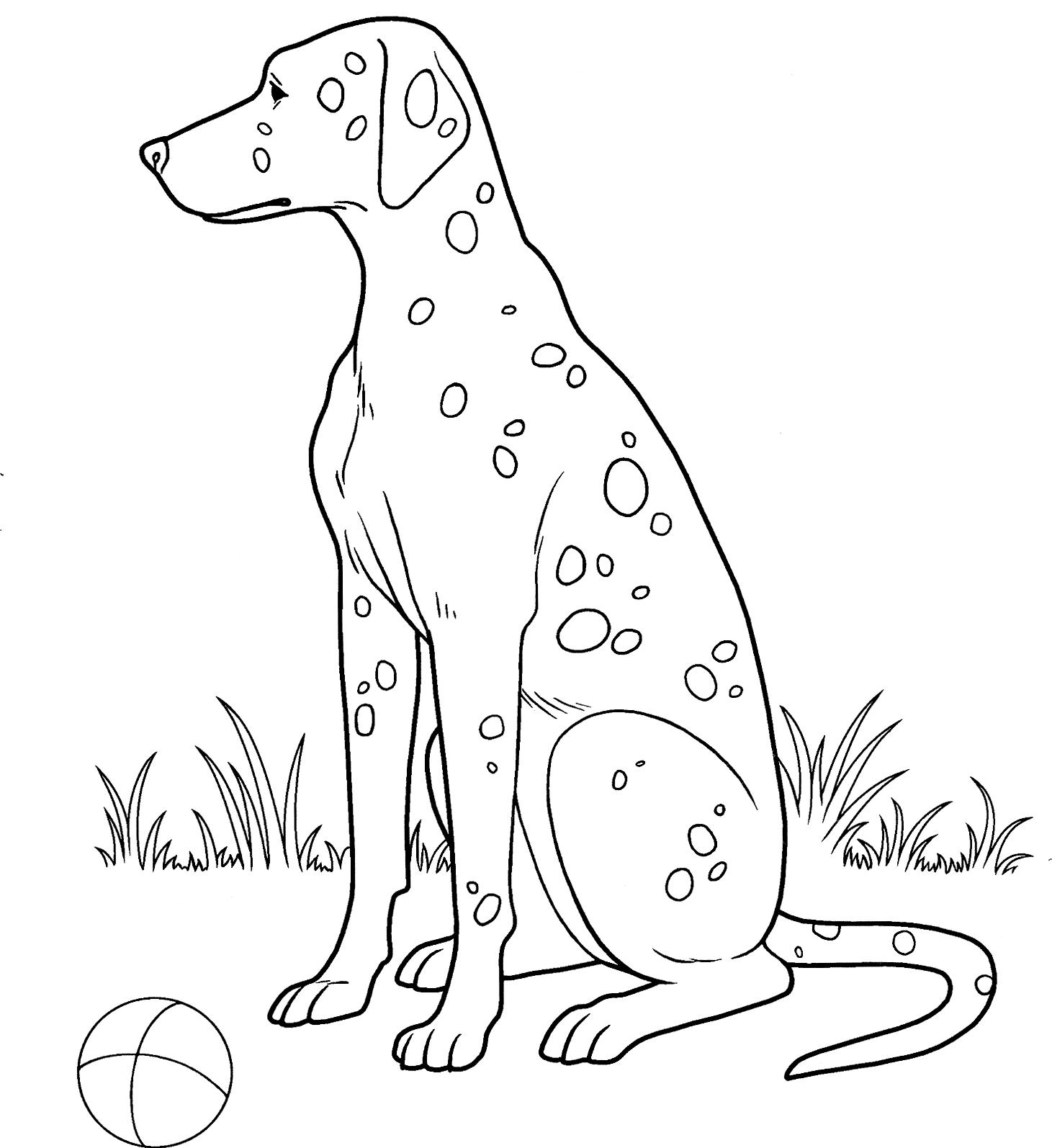Disegni Da Colorare Animali Buffi.47 Disegni Cani Simpatici E Divertenti Da Colorare