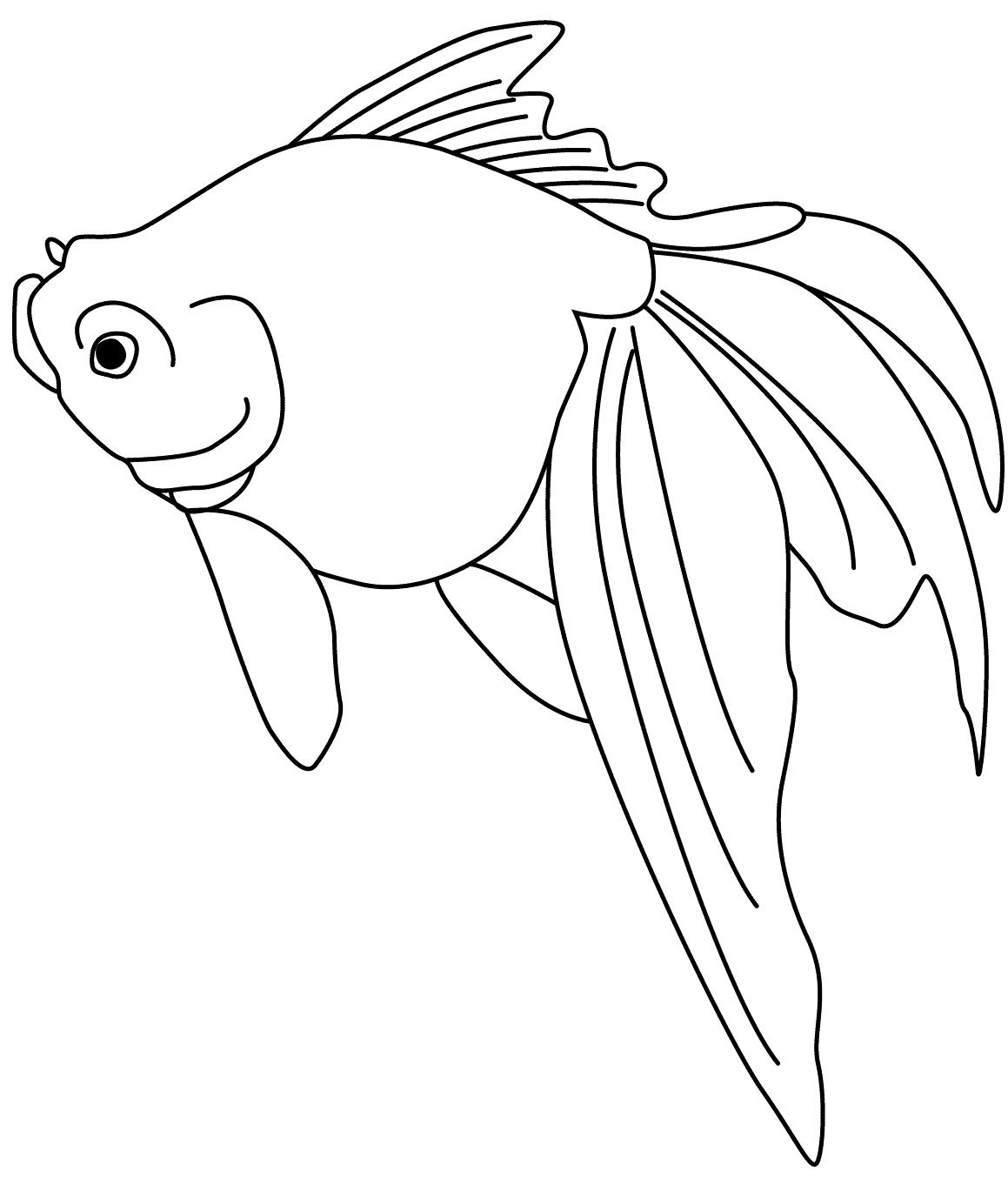 24 disegni pesciolini da colorare for Immagini di pesci da disegnare