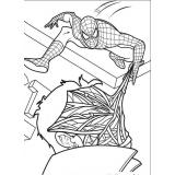 140 Disegni Spiderman Da Colorare
